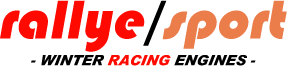Rallye Sport Datsun Experts Logo